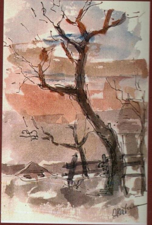 Copaci varianta - Corina-Ligia (culori de apa)