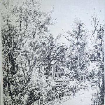 Strada Twain, California, schita, maestra, Violeta, Lecca, Balan, artista